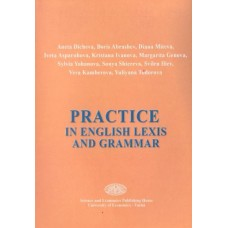 Practice in english lexis and grammar